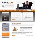 Website design #23259
