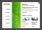 Website design #25257