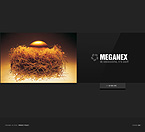 Website design #25317