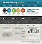 Website design #25323