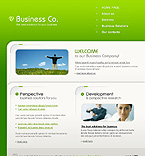 Website design #26003