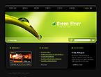 Website design #27021