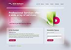 Website design #29594