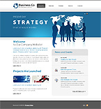 Website design #29676