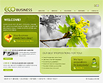 Website design #29681