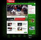 Website design #31574