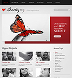 Website design #33171