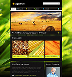 Website design #33215