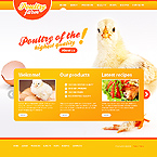 Website design #33272