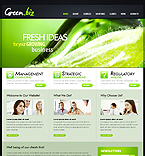 Website design #33297