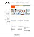 Website design #35101