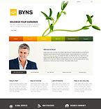 Website design #35114
