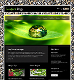 Website design #36432