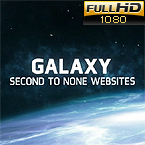 Website design #36662