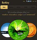 Website design #38244