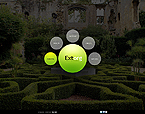Website design #38732