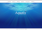 Website design #39517