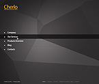 Website design #39520