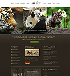 Website design #39619