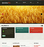Website design #39659