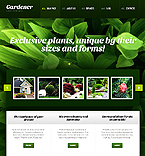Website design #39696
