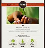 Website design #39740