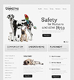 Website design #39817