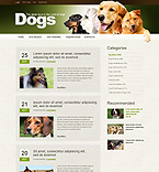 Website design #39848