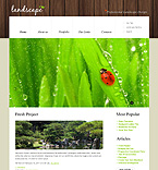 Website design #39850