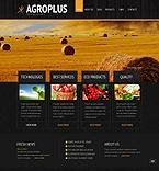 Website design #39960