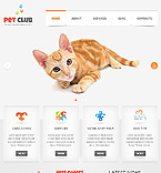 Website design #39986
