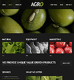 Website design #39993
