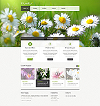 Website design #40045