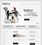Website design #40072