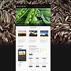 Website design #40101