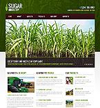 Website design #40104