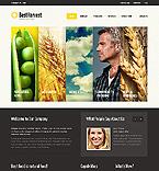 Website design #40229