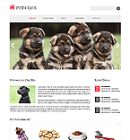 Website design #40309