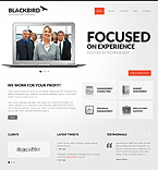Website design #40350