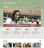 Website design #40383