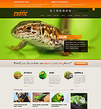 Website design #40510