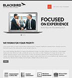 Website design #40581